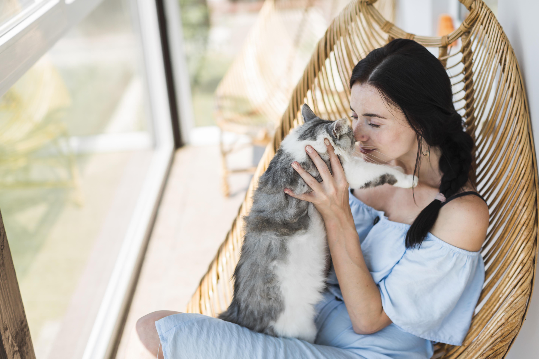 Como ter um pet em um apartamento sem criar problemas